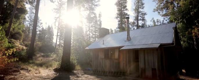 cabinwoods1