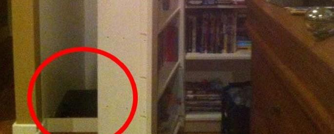 creepybookshelf
